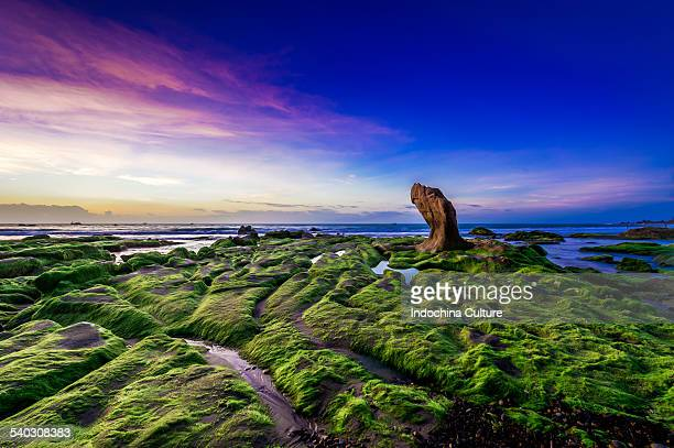 Beautiful sunrise at Co Thach beach