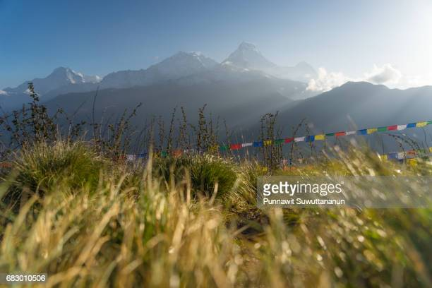 Beautiful sunrise at Poon Hill view point, Annapurna base camp trek, Pokhara, Nepal