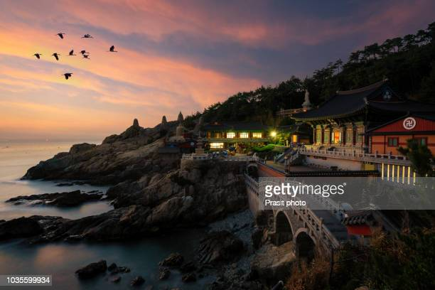 beautiful sunrise haedong yonggungsa temple in busan, south korea. - korea stock pictures, royalty-free photos & images