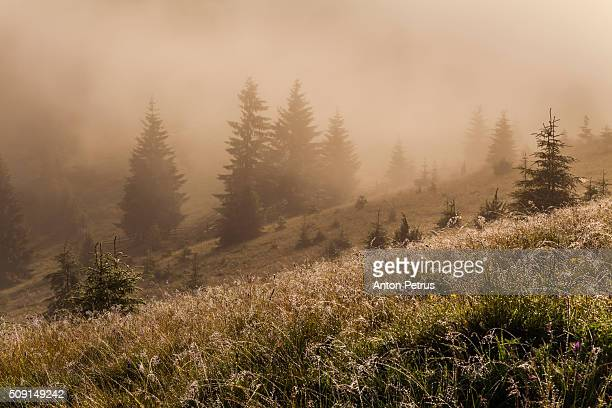 beautiful sunrise in the mountains - anton petrus stock pictures, royalty-free photos & images