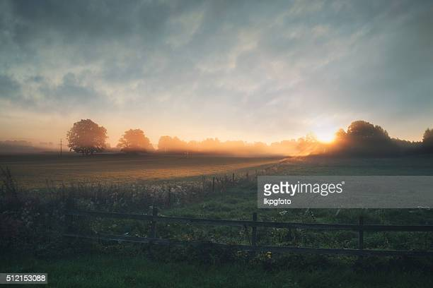 beautiful sunrise over misty field an early summer morning - avondschemering stockfoto's en -beelden