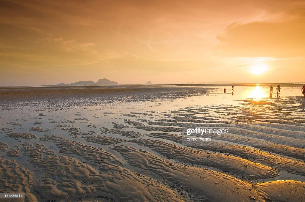 海の美しい日の出 : ストックフォト