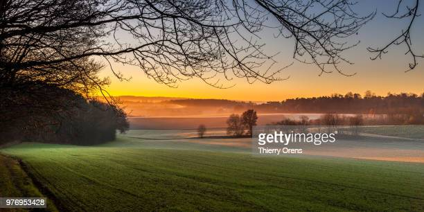 beautiful sunrise - belgium stock pictures, royalty-free photos & images