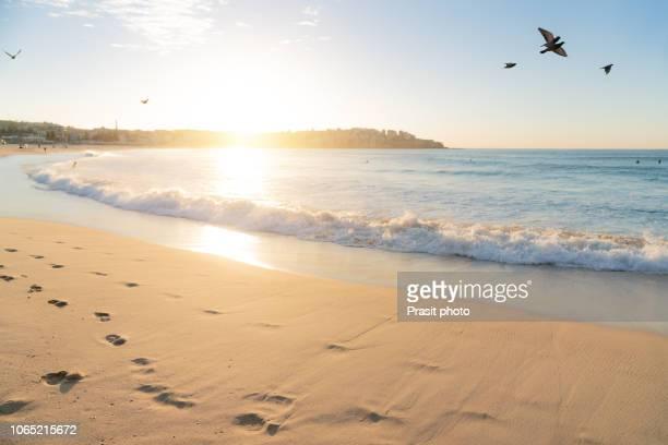 beautiful sunrise seascape in bondi beach at sydney, australia. - bondi beach stock pictures, royalty-free photos & images