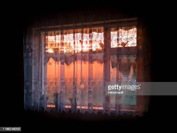 beautiful sunrise through the window with curtain - morning stockfoto's en -beelden