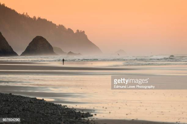 beautiful sunset at cannon beach, oregon. - oregon us state stock pictures, royalty-free photos & images