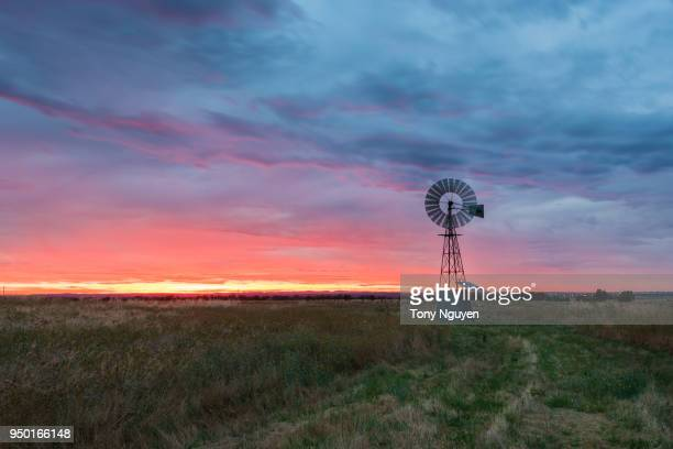beautiful sunset beside windmill in rural area, one of the most popular scene in regions in australia. - the karoo stock pictures, royalty-free photos & images