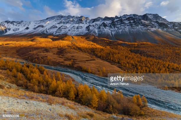 beautiful sunset in a mountain valley in autumn - kananaskis stock-fotos und bilder