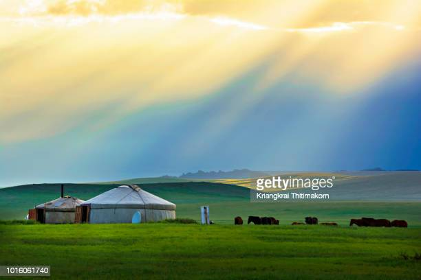 beautiful sunset in mongolia. - independent mongolia stock pictures, royalty-free photos & images