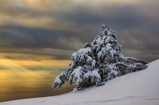 Beautiful sunset in the winter in the mountains with sea views - gettyimageskorea