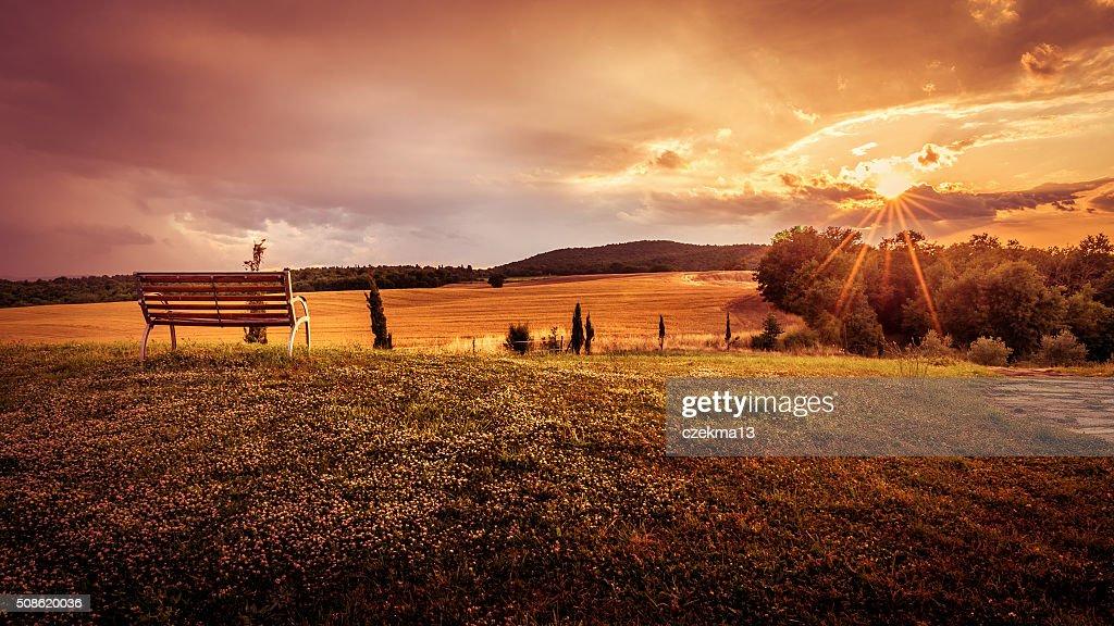 Beautiful sunset landscape : Stock Photo