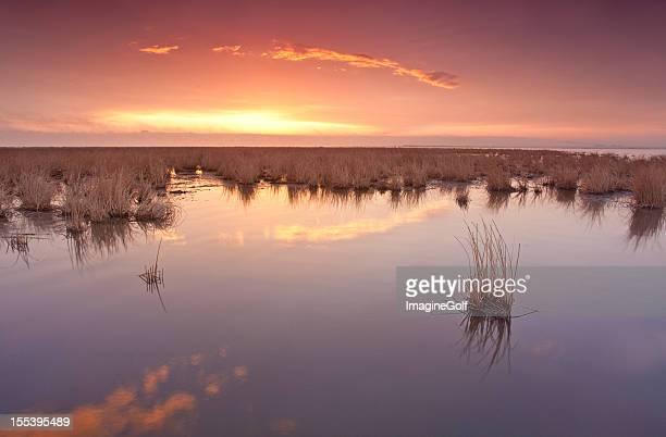 Beautiful Sunset over Prairie Marsh.