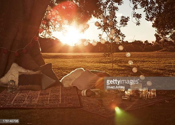 Beautiful sunset picnic