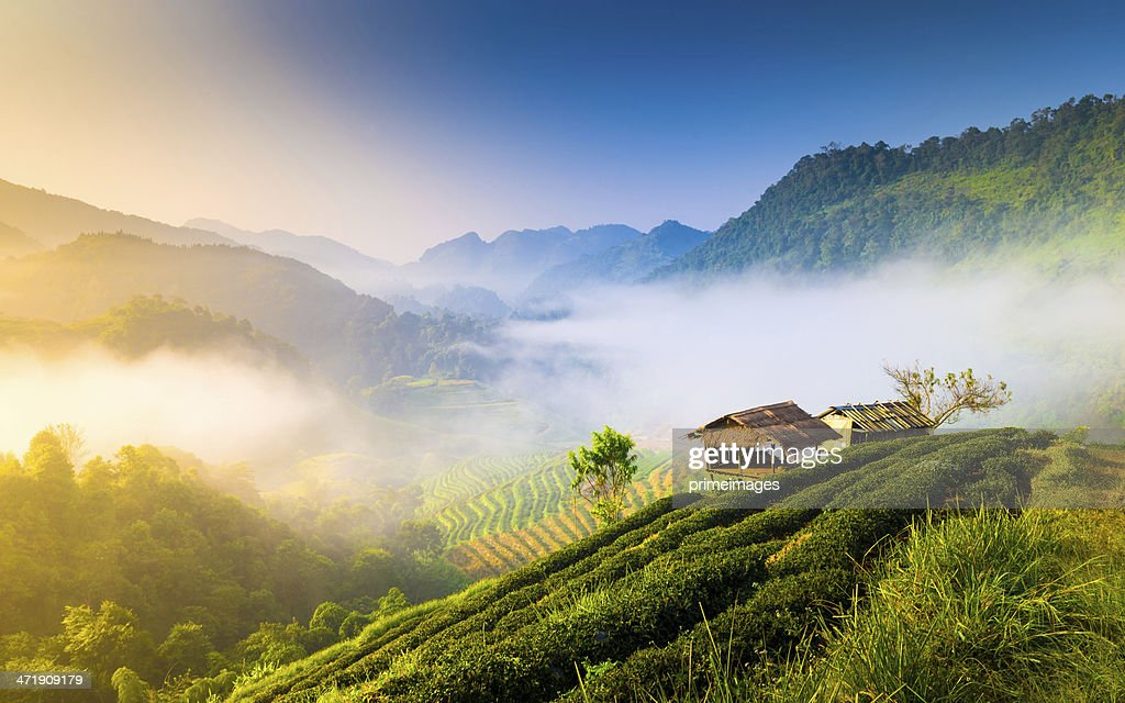 Beautiful Sunshine At Misty Morning Mountains High-Res ...