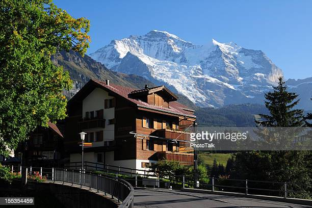 Beautiful Swiss House and Landscape - XLarge