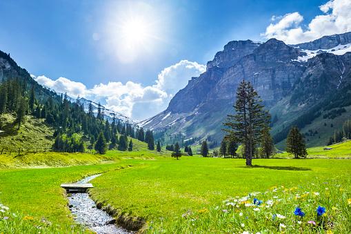 Beautiful Swiss Mountains in Springtime 1131616912