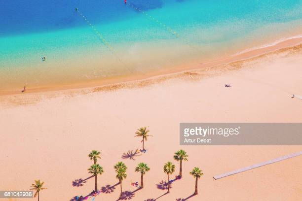 Beautiful Tenerife island beach taken from elevated viewpoint with nice composition, palm trees and colorful layers.