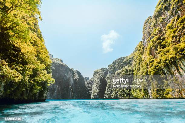 beautiful thai vegetation in the sea - phuket province stock pictures, royalty-free photos & images