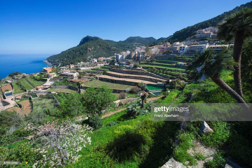 Beautiful town Banyalbufar, Mallorca, Spain : Stock-Foto