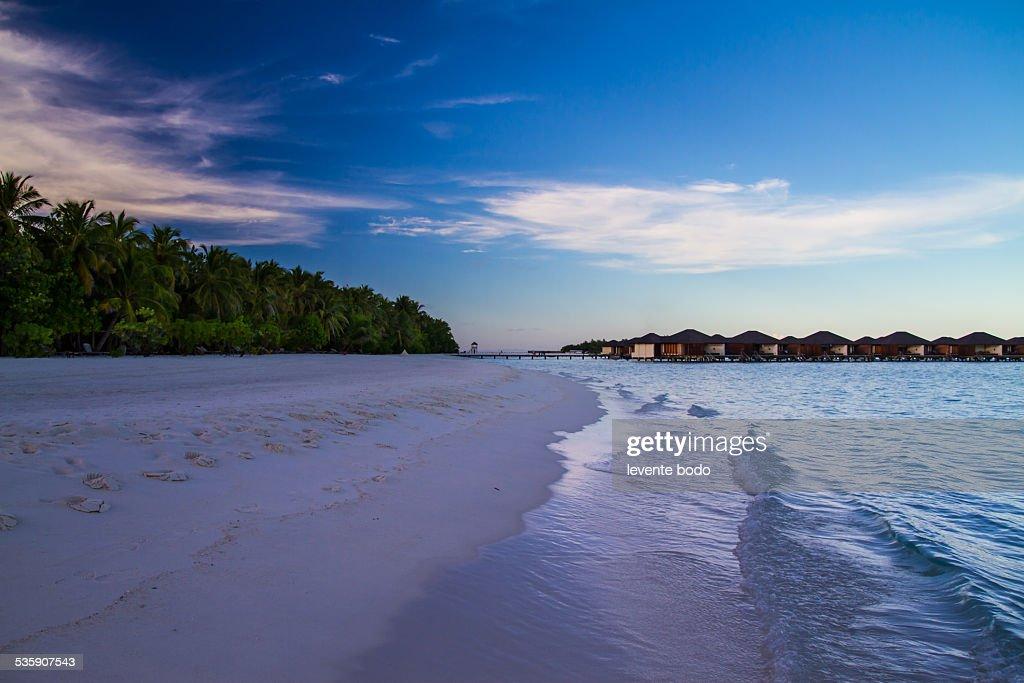 Beautiful tropical beach landscape in Maldives : Stock Photo