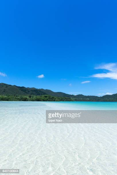 Beautiful tropical beach of Iriomote-Ishigaki National Park, Japan