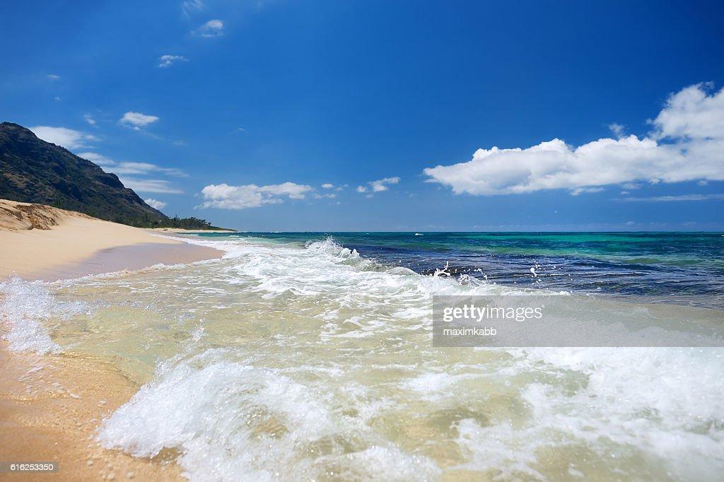 Bela praia tropical na Ilha de Oahu : Foto de stock
