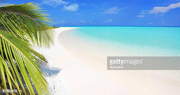 Bellissima spiaggia tropicale.