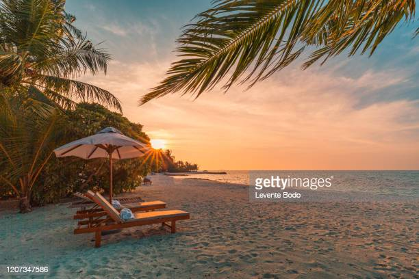 beautiful tropical sunset scenery, two sun beds, loungers, umbrella under palm tree. white sand, sea view with horizon, colorful twilight sky, calmness and relaxation. inspirational beach resort hotel - strand stockfoto's en -beelden
