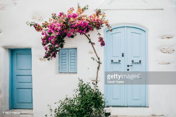 beautiful turqoise door and bouganvillae in naoussa,greece - greece stock pictures, royalty-free photos & images
