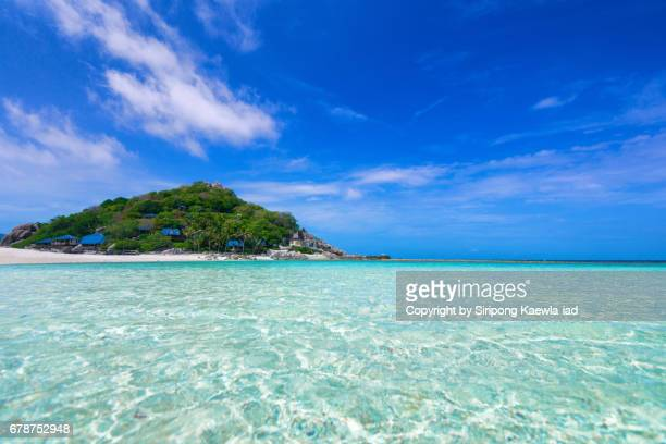 beautiful turquoise colored sea at nangyuan island, suratthani province - surat thani province stock pictures, royalty-free photos & images