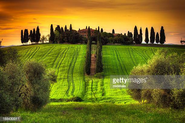 Beautiful Tuscany Landscape with Typical Villa at Sunset