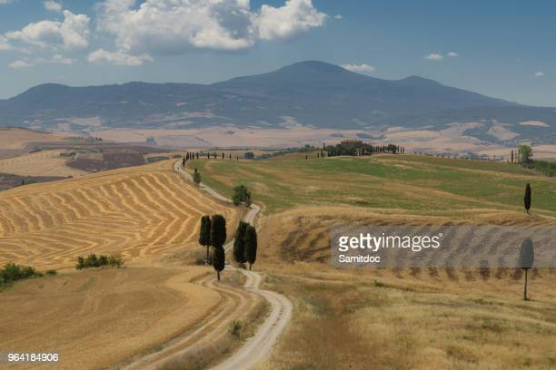 Beautiful typical summer landscape of Val d'Orcia in Tuscany, Val d'Orcia, Tuscany, Italy