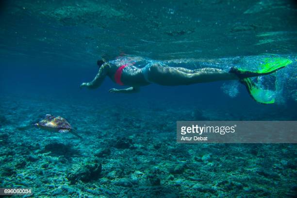 Beautiful underwater sea life with big turtle swimming with woman doing snorkel close to Gili islands a paradise for snorkeling during travel vacations in Indonesia.