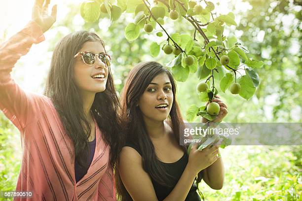 Beautiful urban girls holding tree branch full of Asian pear.