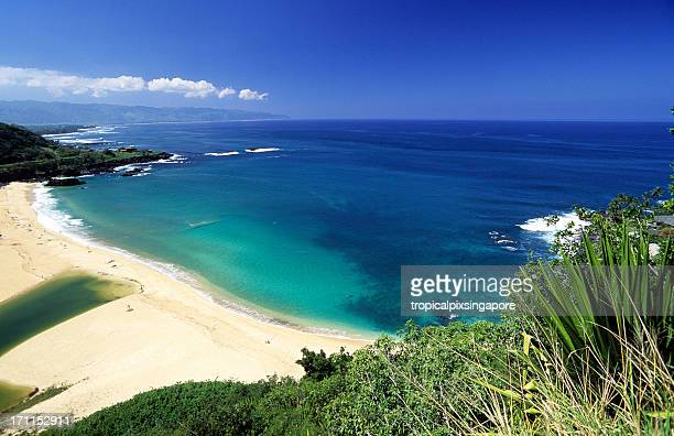 beautiful view at north shore waimea bay in oahu, hawaii - waimea bay hawaii stock photos and pictures