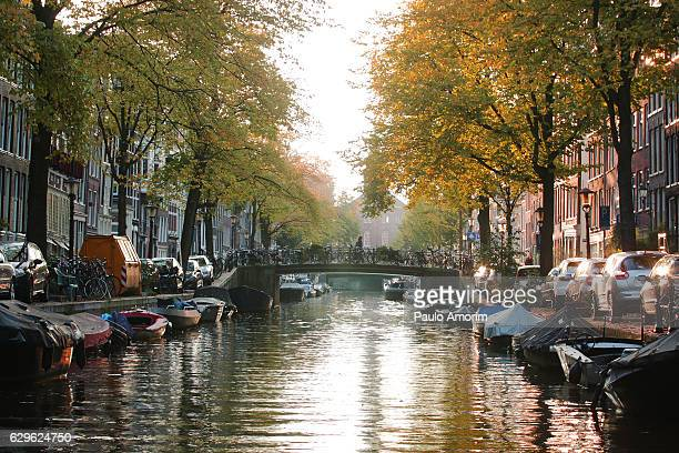 beautiful view from the canal in amsterdam - canal stock pictures, royalty-free photos & images