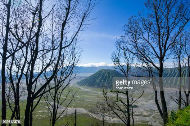 beautiful view landscape of active volcano crater with fog and smoke at bromo tengger semeru national park, east java, of indonesia. - shaifulzamri stock-fotos und bilder