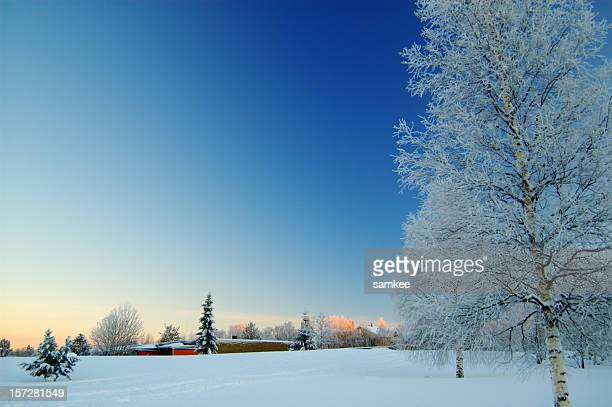 A beautiful view of a field during winter