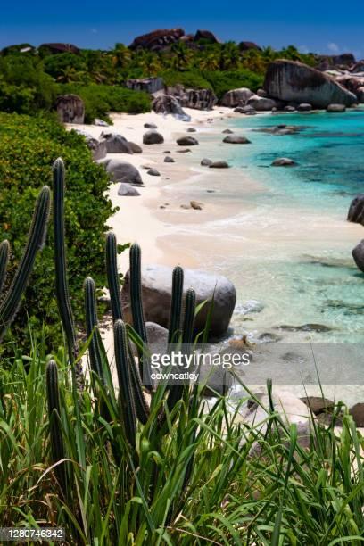 hermosa vista de una playa tropical en virgin gorda - islas de virgin gorda fotografías e imágenes de stock