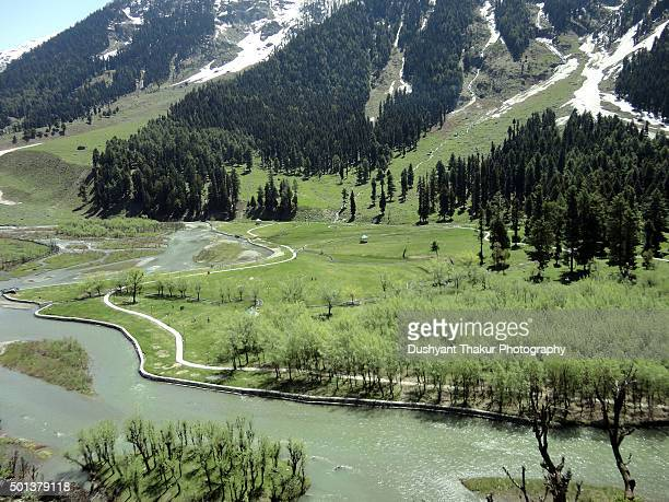 beautiful view of betab valley, kashmir, srinagar, india - kashmir stock photos and pictures
