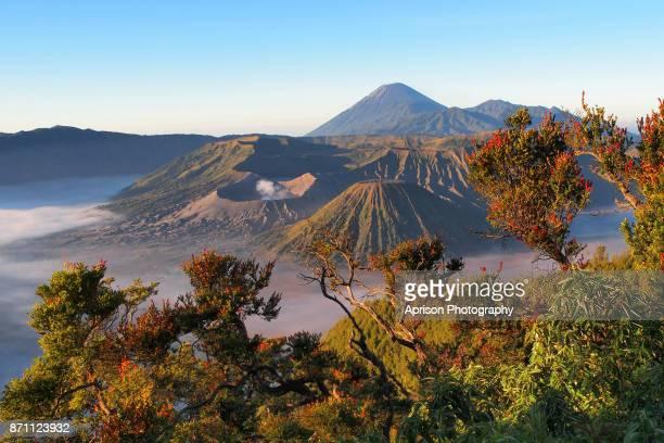 beautiful view of bromo mountains - bromo tengger semeru national park stock pictures, royalty-free photos & images