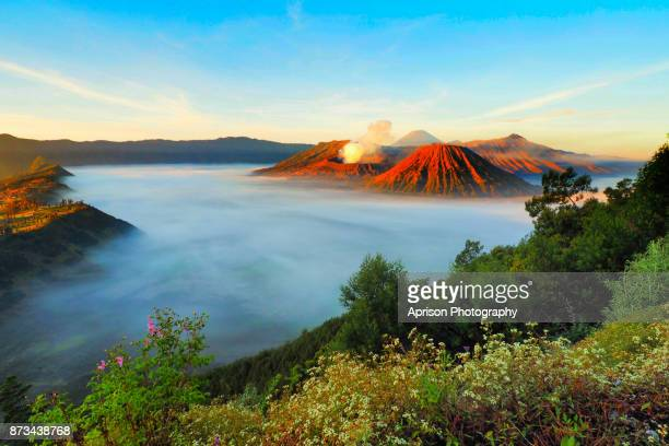 beautiful view of bromo mountains - java stock pictures, royalty-free photos & images