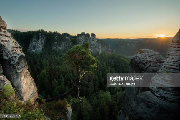 beautiful view of forest between mountains at sunrise, stadt wehlen, germany - stadt stock pictures, royalty-free photos & images