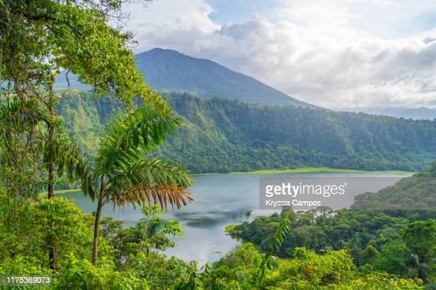 beautiful view of lake and mountain at costa rican rainforest - costa rica stock pictures, royalty-free photos & images
