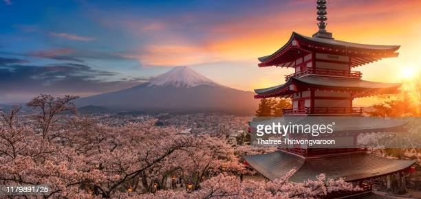 beautiful view of mountain fuji and chureito pagoda at sunset, japan in the spring with cherry blossoms, fujiyoshida, japan - japan stockfoto's en -beelden