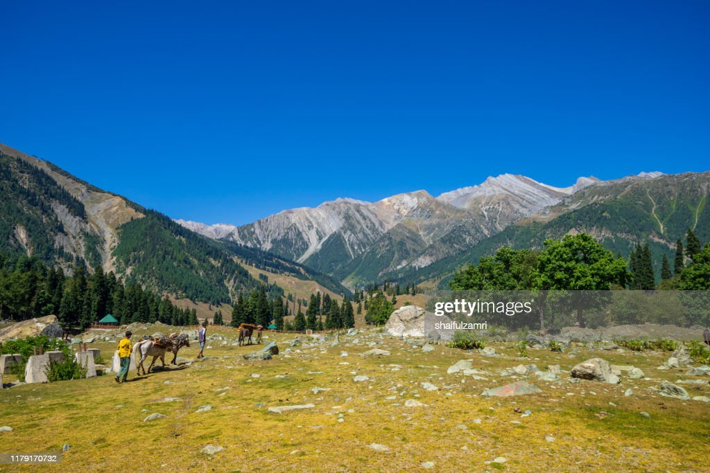 Beautiful view of Sonamarg valley in Kashmir, India : Stock Photo