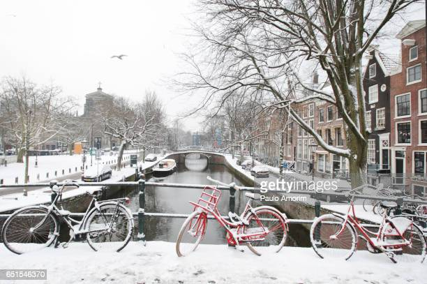 Beautiful view of the Amsterdam Covered in Snow