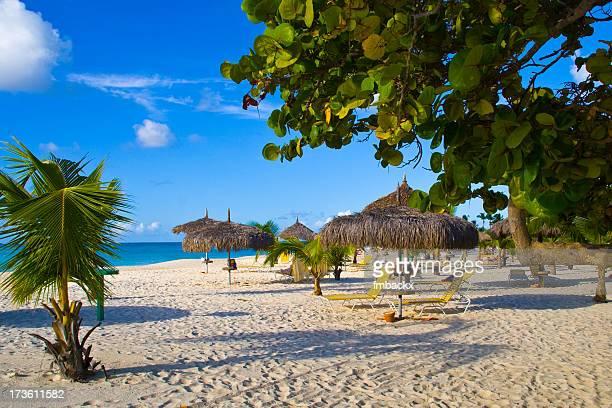 Beautiful view of the eagle beach in Aruba