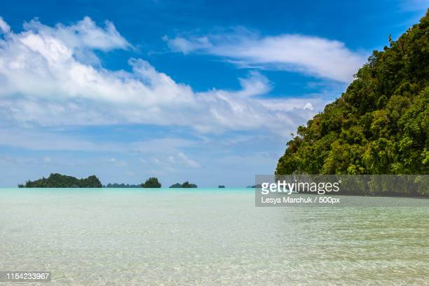 beautiful view of uplifted limestone islands with tropical fores - forens stock pictures, royalty-free photos & images