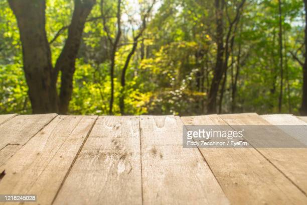 beautiful warm day with table. yellow leaves and blured background. - woodland stock pictures, royalty-free photos & images